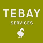 tebay-services-logo